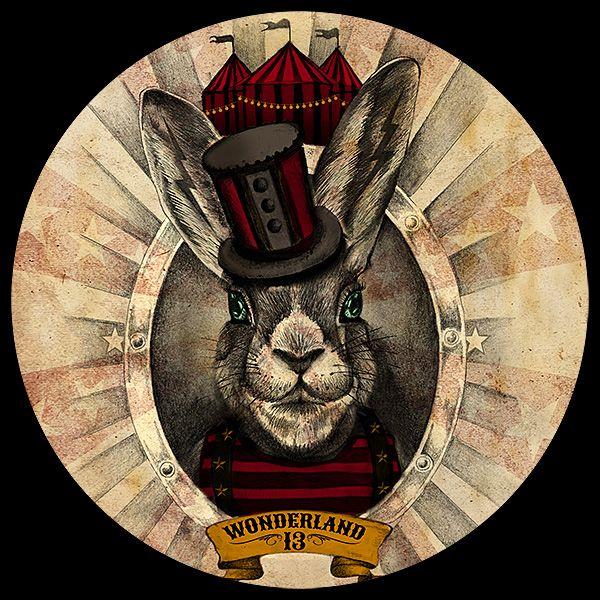 Wonderland 13 Store Rabbit